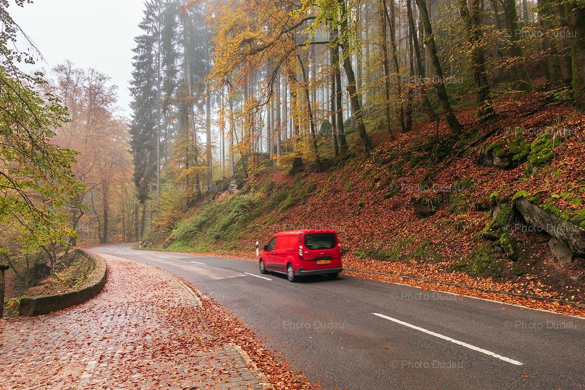 Car driving in Mullerthal region