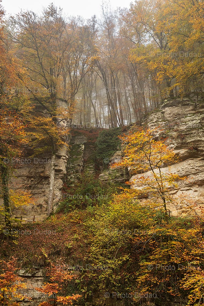 Mullerthal rock formations