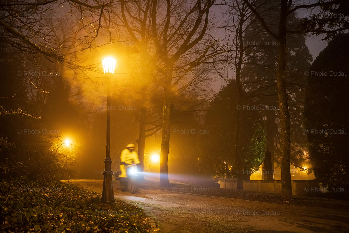 Foggy night park alley in Luxembourg