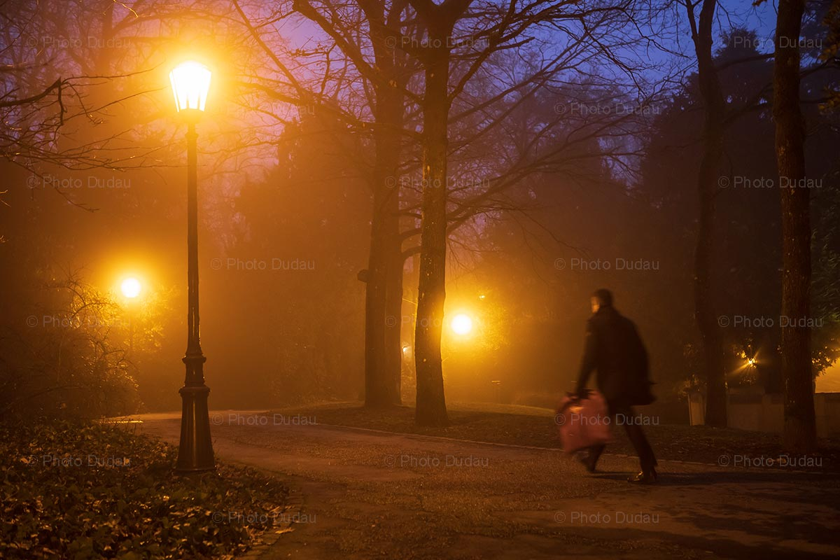 Foggy Municipal Park at night in Luxembourg