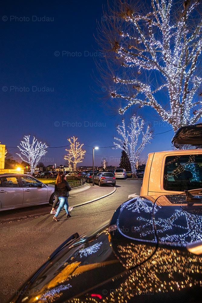 Christmas festive trees
