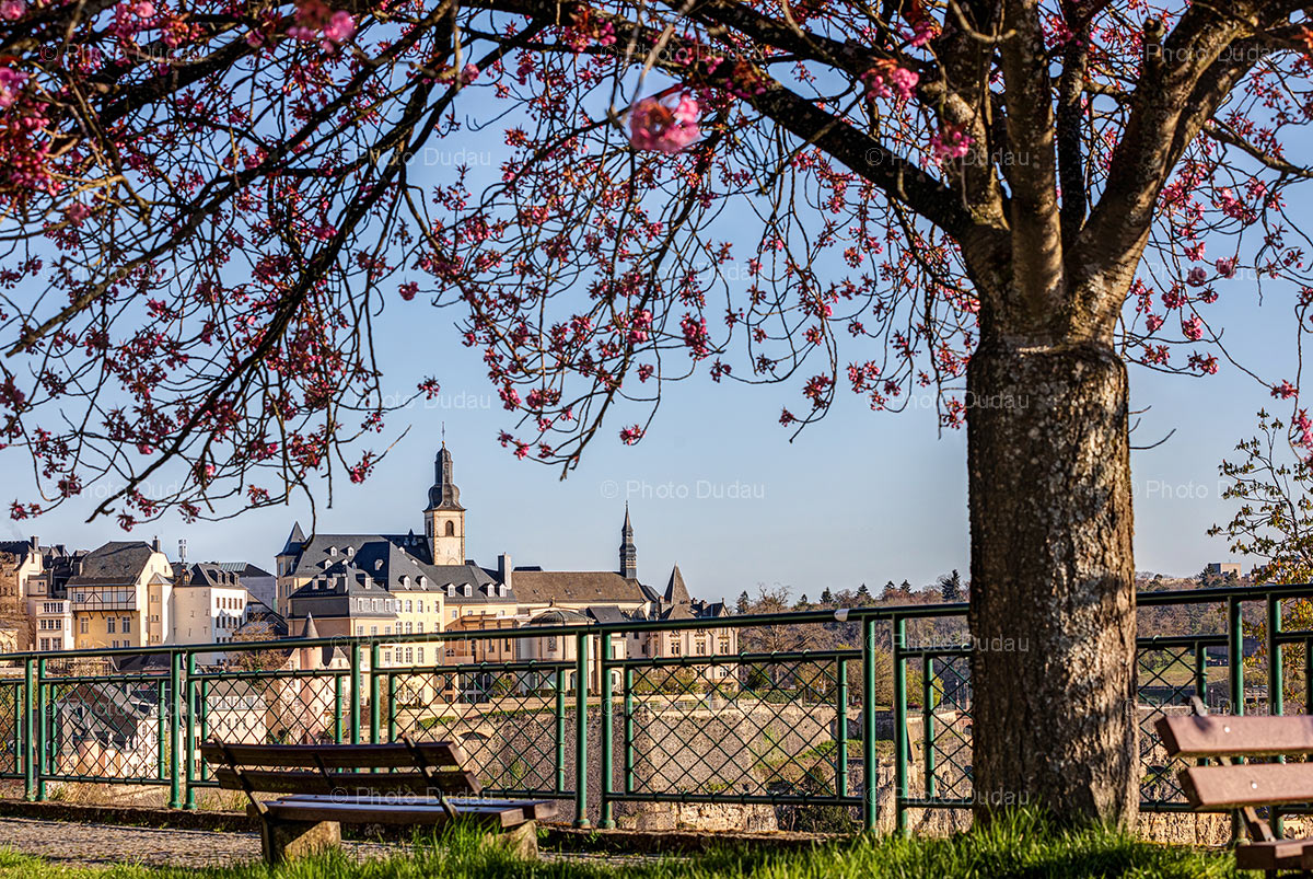 Luxembourg in spring