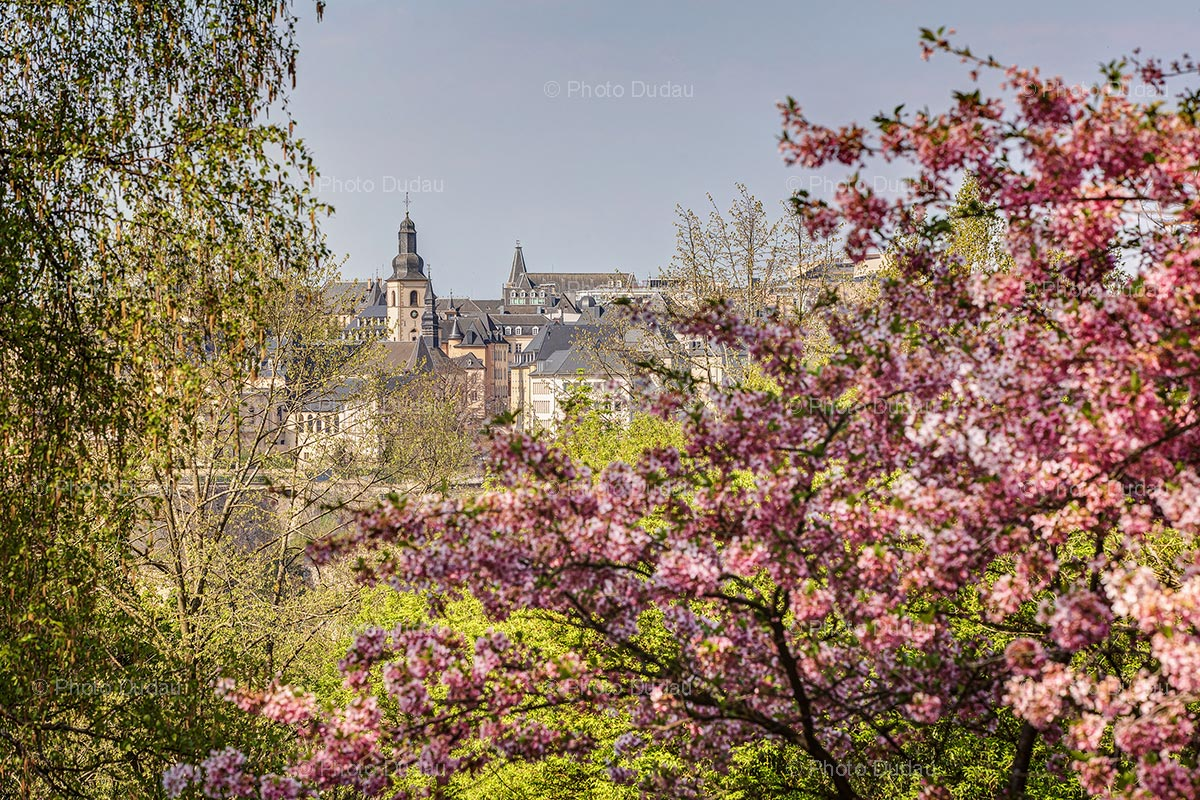 Luxembourg city spring