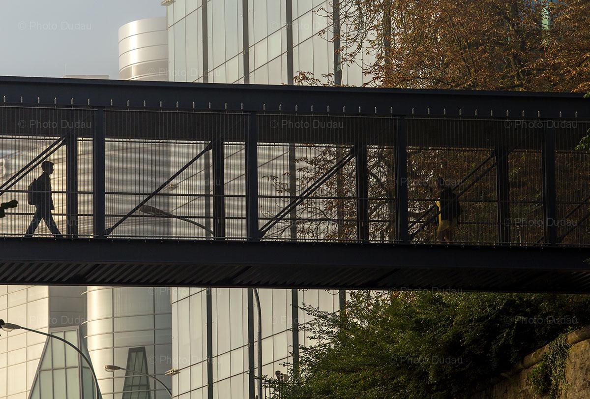 business scene luxembourg