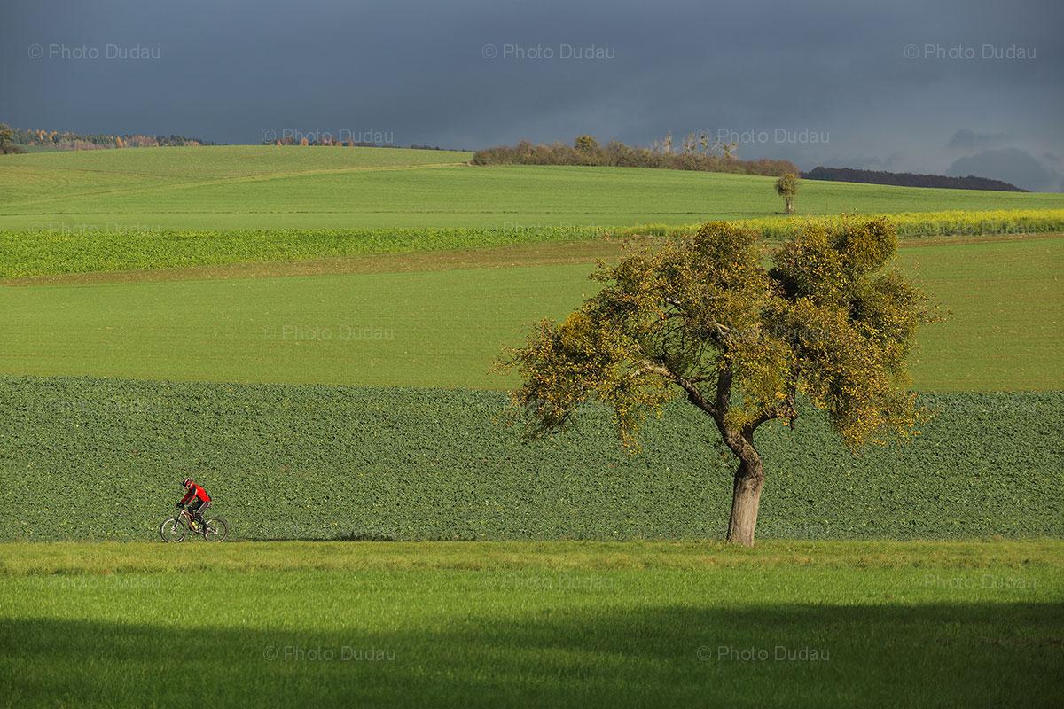 Cycling on the hills of Echternach