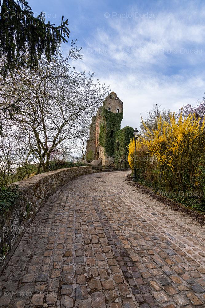 chateau de hesperange